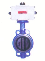 气动全衬胶蝶阀D671J-10